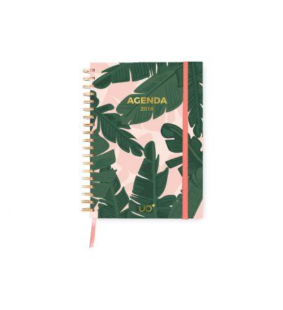 """Agenda 2018 """"Tropical"""""""